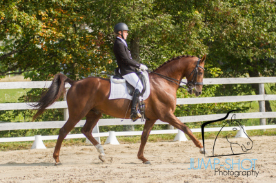 Horse Show #3 September 17th 2017 Results